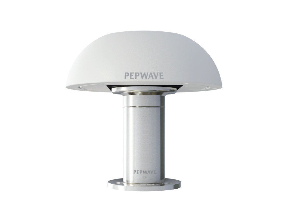 74913_Peplink-ACW-650-HD-Dome-example.jpg