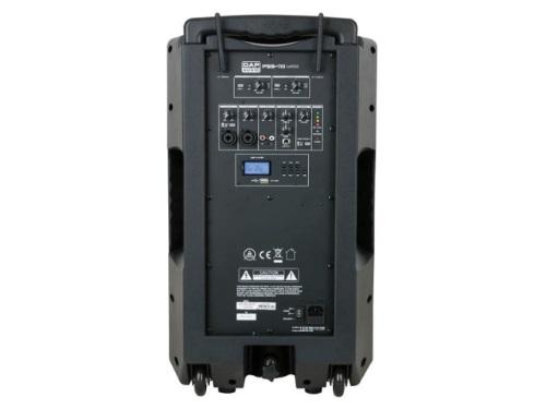 dap-pss-110-mkii-2.jpg