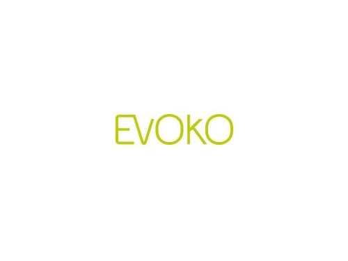 evoko-adapter.jpg
