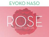 Evoko Naso Rose Licentie image