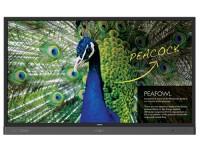 BenQ RP7501K display image