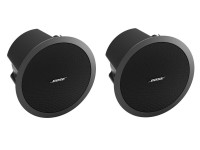 Bose FreeSpace DS100F Speaker image