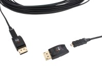 DisplayPort Extender 100 meter image