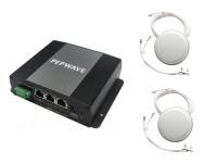 Pepwave MAX BR1 4G M2M Router image