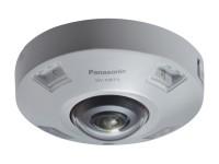 Panasonic WV-X4571LM image