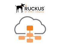Ruckus Single AP management licentie